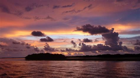cape coral boat tours sunset tours with banana bay tour company fort myers fl