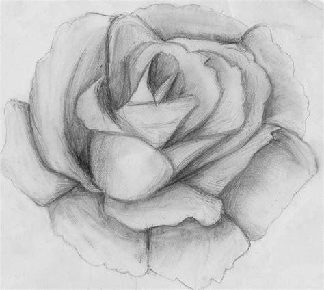 imagenes de flores tristes dibujos de rosas con sombras a lapiz buscar con google