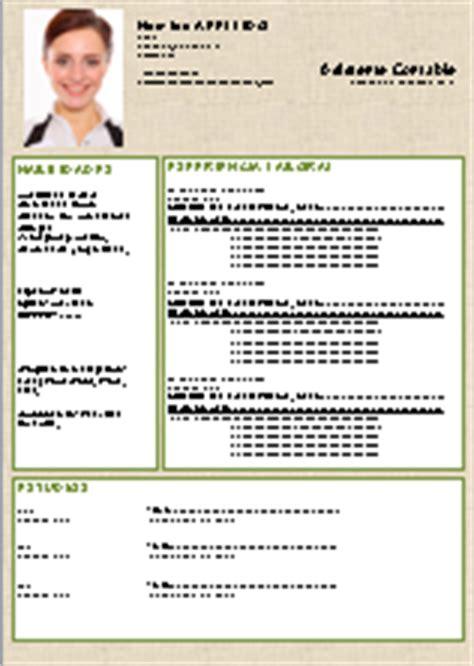 Descargar Plantillas De Curriculum Vitae Para Word 2003 Ejemplo De Curriculo Original Para Descargar Gratis En Espa 241 Ol