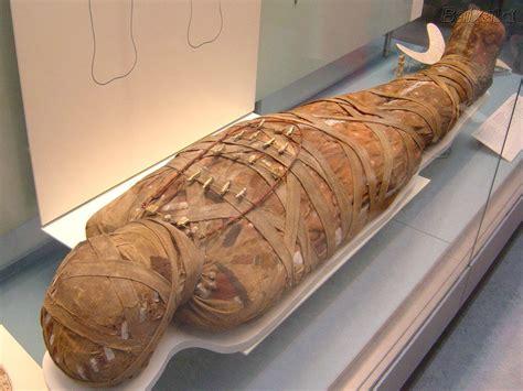 imagenes momias egipcias para niños egito imagens de mumias e animais mumificados