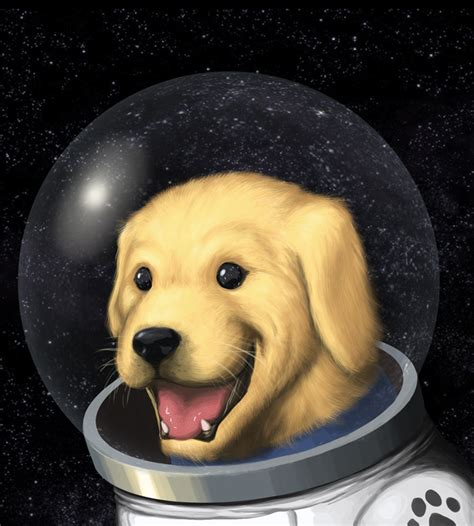 space puppies space puppy by turbofanatic on deviantart
