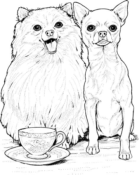 free coloring pages of dog breeds dog breed coloring pages