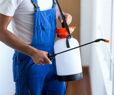 bed bug exterminator detroit pest control detroit pest control services detroit father son pest control