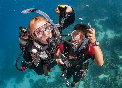 dive master padi new year new career becoming a padi divemaster