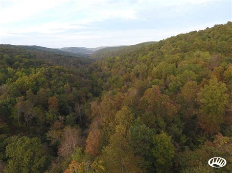 Ozark Mountain Property In Northwest Arkansas   Winslow   Whitetail Properties