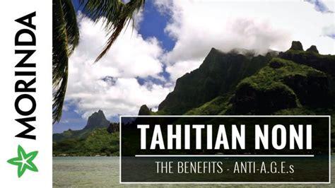 Minuman Kesehatan Tahitian Noni 100 Original Morinda Indonesia Tahitian Noni Juice Maxidoid