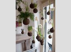 20 Beautiful Kokedama String Garden Ideas | Home Design ... House With Garden Clipart