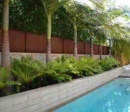backyard trees landscaping ideas home decorating
