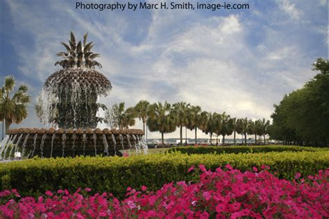 Chs Gift Card - waterfront park pineapple fountain charleston sc charleston south carolina