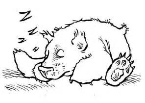 coloring page sleeping bear img 7580