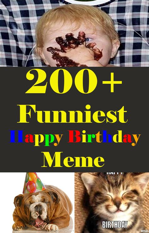 funniest birthday memes   top collections