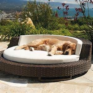 Cover For Chaise Lounge Chair Chic Home Mom Trends In Pet Beds Lux Fun Styles For Every