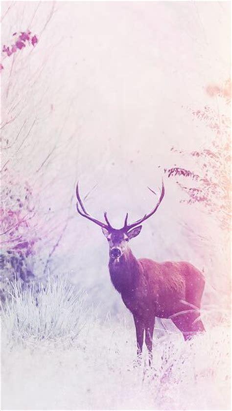 deer pattern iphone wallpaper 25 best ideas about deer wallpaper on pinterest
