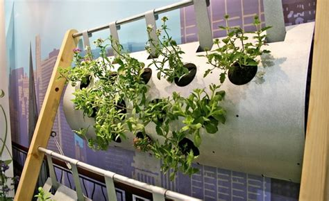 home vegetable garden ideas home interior and furniture indoor vegetable garden gardening flower and vegetables