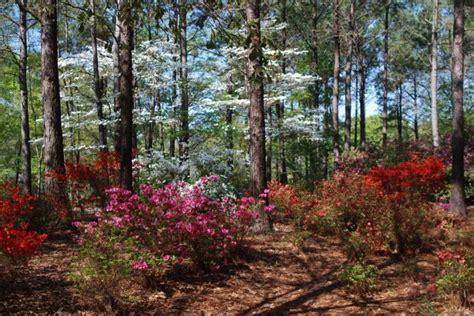 Botanical Gardens Dothan Al by Dothan Area Botanical Gardens