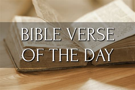 bible verse of the day matthew 7 12 religion