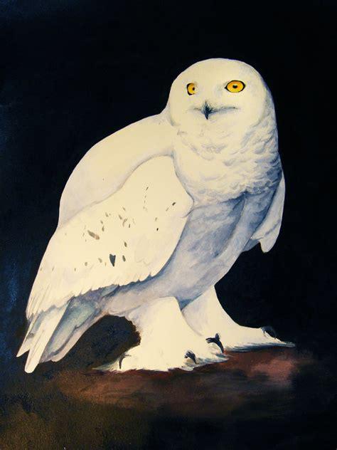 Snow Owl Papercraft By Elfbiter On Deviantart - snowy owl by heylorlass