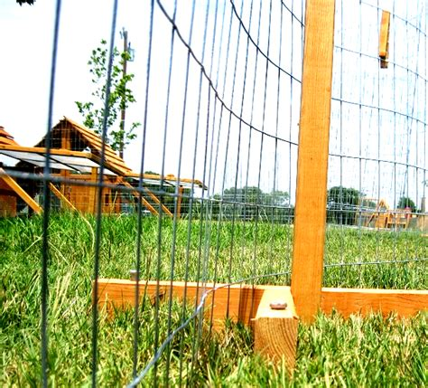 movable chicken fence large chicken duck coops for 12 chickens ducks nationwide mothers day sale