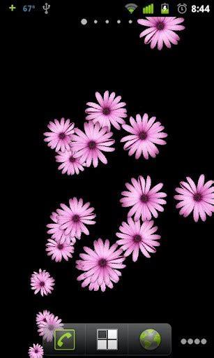 wallpaper flower live pink flower live wallpaper app for android