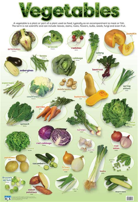 vegetables chart vegetable chart images search