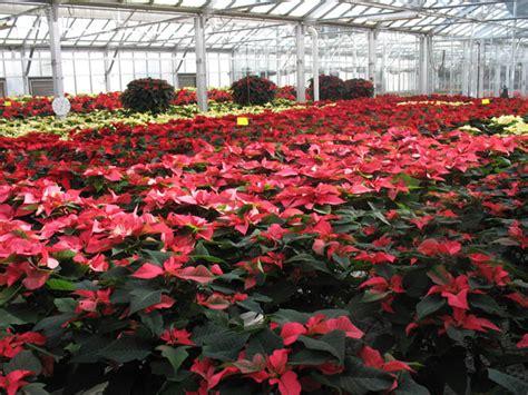 St Louis Botanical Garden Events Missouri Botanical Garden Events At Mbg