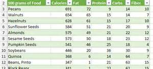 nutrition spreadsheet template excel template food calorie and nutritional value of