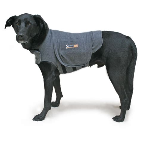 thundershirt for dogs reviews car accessories for dogs 2017 2018 best cars reviews