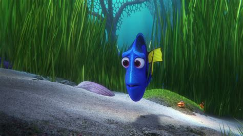 Disney Pixar Finding Dory finding dory 2016 pictures images official disney
