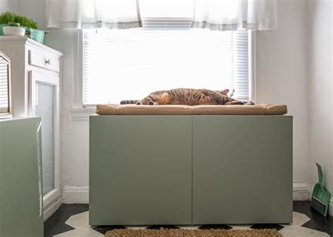 keeping litter box in bedroom how to conceal a kitty litter box inside a cabinet hgtv