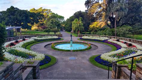 the botanical gardens sydney tourism in sydney and nsw australia in sydney