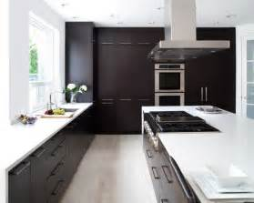 Kitchen Island Manufacturers dark cabinets light floor houzz