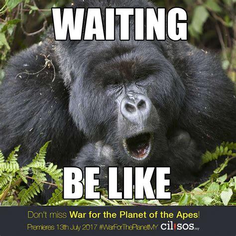 It Only Smellz Meme - ape meme 28 images angry ape meme center konina