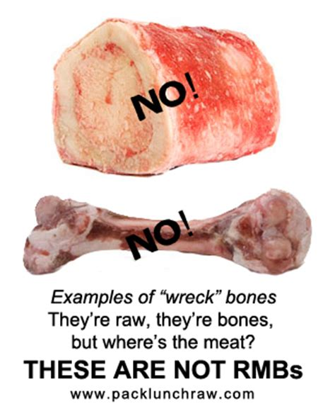 can you give dogs pork bones posts contentnews