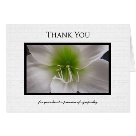 thank you letter sympathy gift sympathy thank you note card white amaryllis zazzle