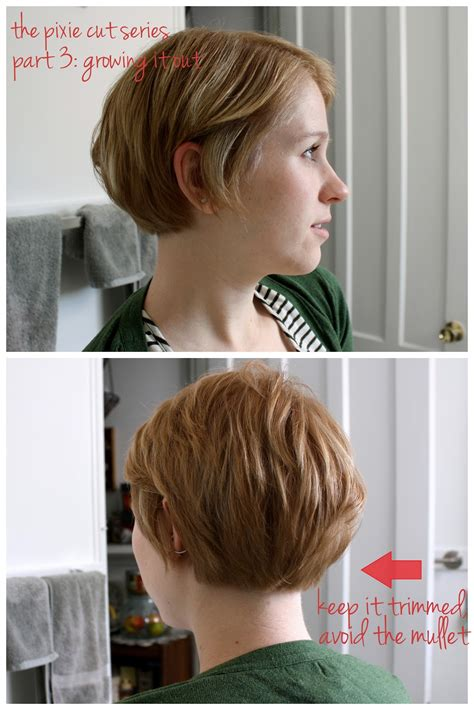hairstyles while growing out pixie cut pixie wedge back view hairstylegalleries com