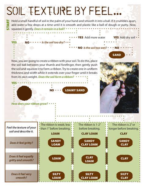 soil texture flowchart acids and basics of soil savvy urbanite farmer