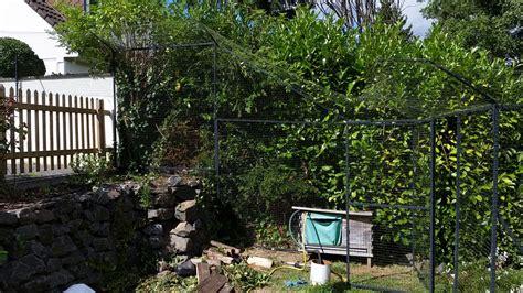 katzennetz garten katzennetz system im garten katzennetze nrw der
