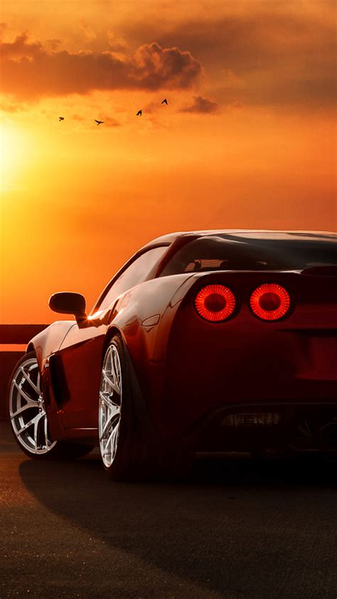 ferrari tail lights sunset birds iphone  wallpaper hd