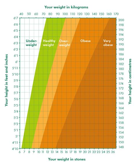 biggest loser weight loss chart template fresh weight tracker charts