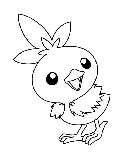 pokemon coloring pages torchic coloring page pokemon advanced coloring pages 211