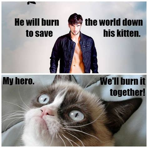 Lux Memes - grumpy cat and daemon black lux series jennifer l