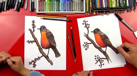how to a bird how to draw a robin bird realistic for hub