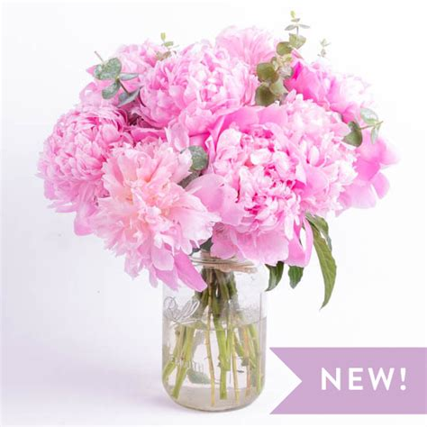 peonies bouquet peony delivery send a bouquet of peonies ode 224 la 174