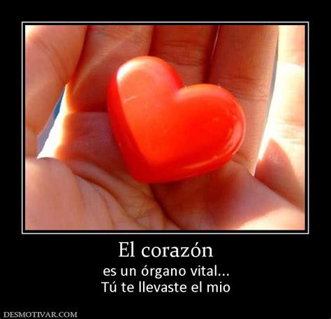 el corazan es un desmotivaciones el coraz 243 n es un 243 rgano vital t 250 te llevaste el mio