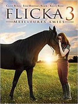 regarder l incroyable histoire du facteur cheval 2019 film en streaming vf l incroyable histoire du facteur cheval 2019 streaming vf
