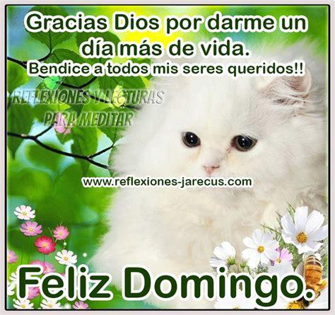 imagenes feliz domingo de dios 31 best images about feliz domingo on pinterest