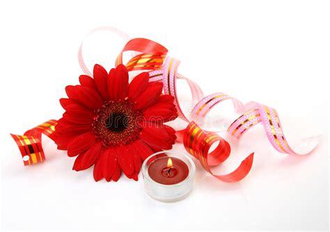 fiori e candele top fiori e candele fini immagine stock libera da