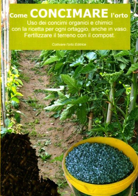 concime per fragole in vaso concimazione coltivare l orto