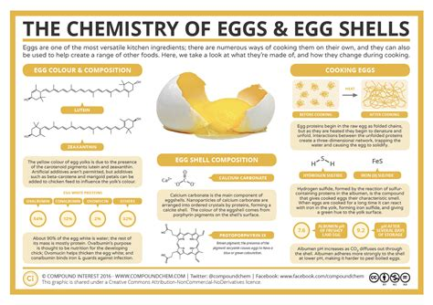 protein one egg compound interest the chemistry of eggs egg shells