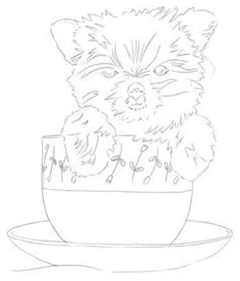how to draw a yorkie puppy 1000 images about yorkies on terrier yorkie and